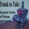Hypnotic Storytelling Album